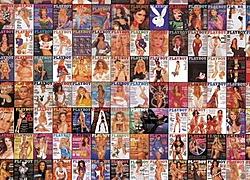 Playboy centerfold anyone?-playboy.jpg