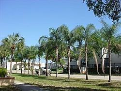 It's Awful nice in FL-blue-sky.jpg
