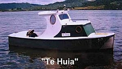 ...a note about spinouts-te_huia.jpg
