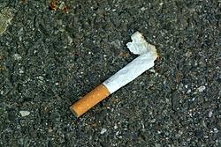 anyone know this cigarette?-cig.jpg