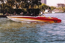 Sportmaster lowers-petes-pic.jpg