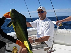 Just back from Cabo-reentry blows!-d%5Cs-fish2.jpg