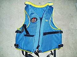 Recent Post's trigger Life Vest Questions-p4200023.jpg
