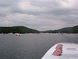 Monsoon is home in VA!!!-party-cove-2.jpg