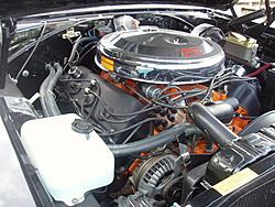 Garage Full- Muscle Car Must Go- 70' Superbird-p1010006.jpg