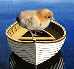The new Chicks in Boats-chicks-n-boats.jpg