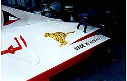 Steve 1   pic's-cheetah-8d.jpg