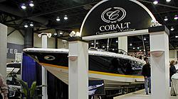Beware of Cobalt, I can't believe I'm admitting this!-cobolt343.jpg