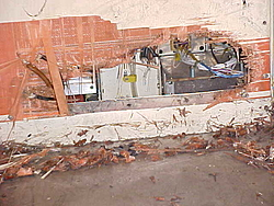 photo of Pit bull eats 747 airplane-aacargo-pitbull6.jpg