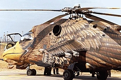 Awesome Paint Job!-helicopter2.jpg