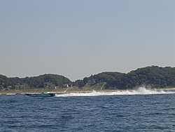 Grand Haven Race pics (finally!)-cat-getting-some-air-large-.jpg