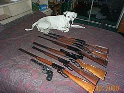 Let's teach Cuda how to shoot.....:D :D-hoggetter.jpg