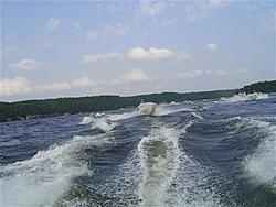 big water-buck-behind-us-small-large-.jpg
