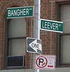 My street corner-jan25.jpg