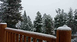 First snowfall of the season-first-snowfall.jpg