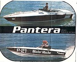 Old performance boat literature-1-pantera-brochure-1975.jpg