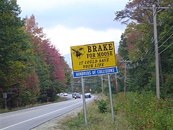 Pics from our Vermont/Maine trip.  Yup, there are some boat pics!-vermontmaine10-04-029-large-.jpg