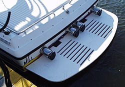 Metal tube style swim platforms-swimplata1.jpg