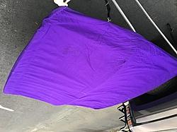 Baja 272 purple Bimini top-img_3417.jpg